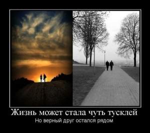 14dHYVHfK_s