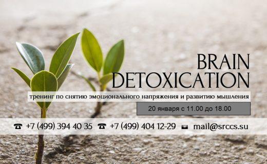 Тренинг BrainDetox