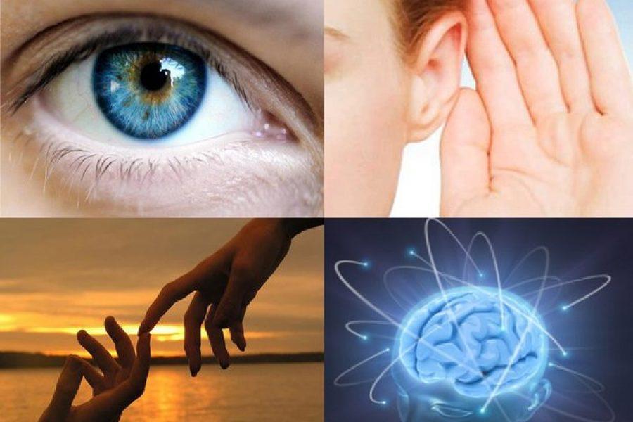 Модальность восприятия информации