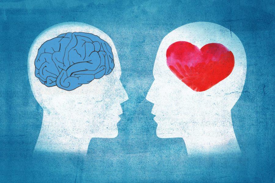 Смысловая основа базовых эмоций человека и их нейрофизиологический субстрат