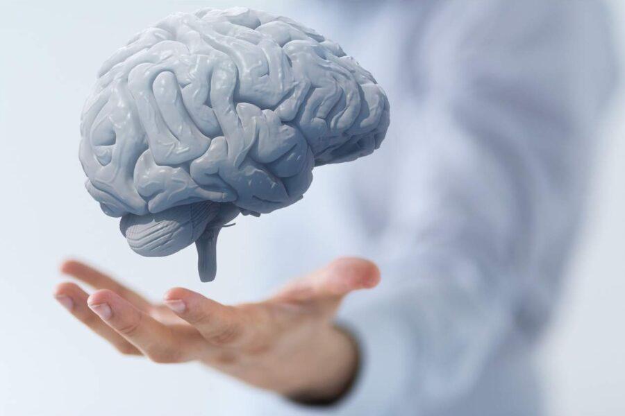 Как сохранить здоровье мозга до старости и преуспеть в развитии своего мышления